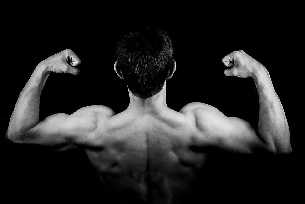 La importancia de trabajar los distintos músculos de forma equilibrada
